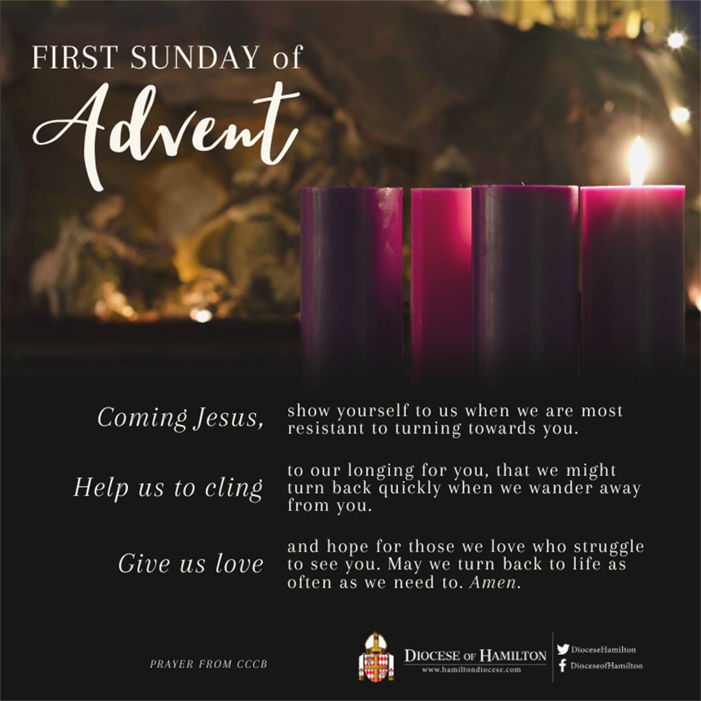 Banner Image for First Sunday of Advent